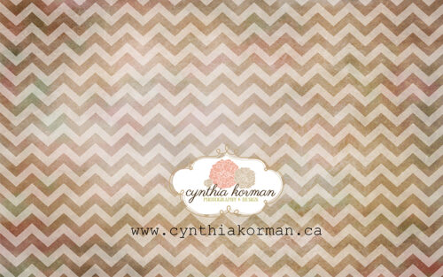 Chevron Grungy Brown-H