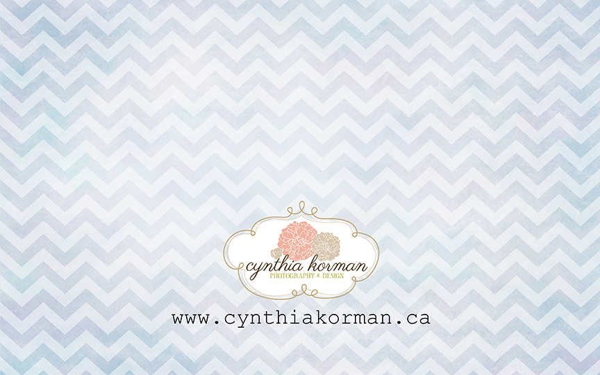 Chevron Grungy Blue-H