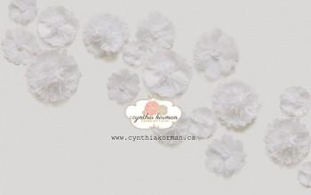 Paper Tissue Flower Trail