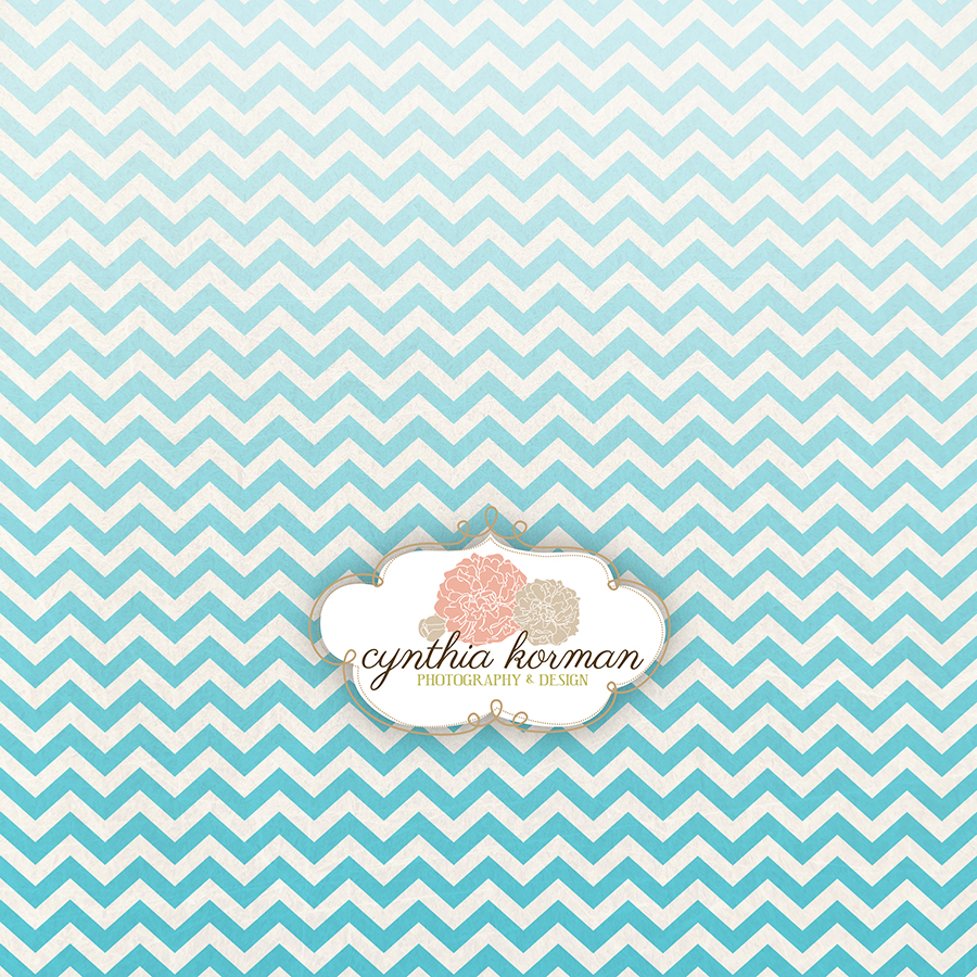 Chevron Summer Blue