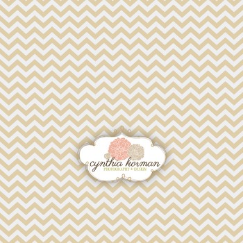 Chevron Light Tan