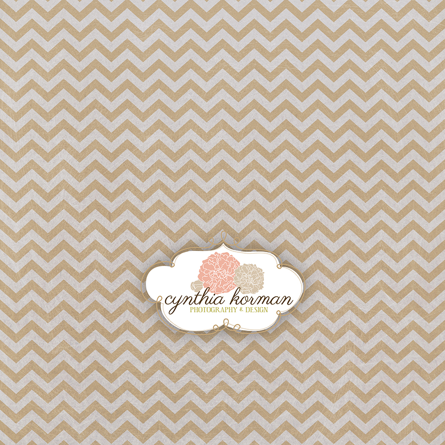 Chevron Spring Tan
