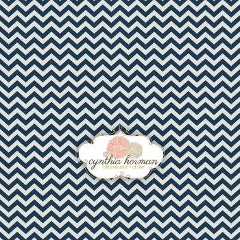 Chevron Summer Navy