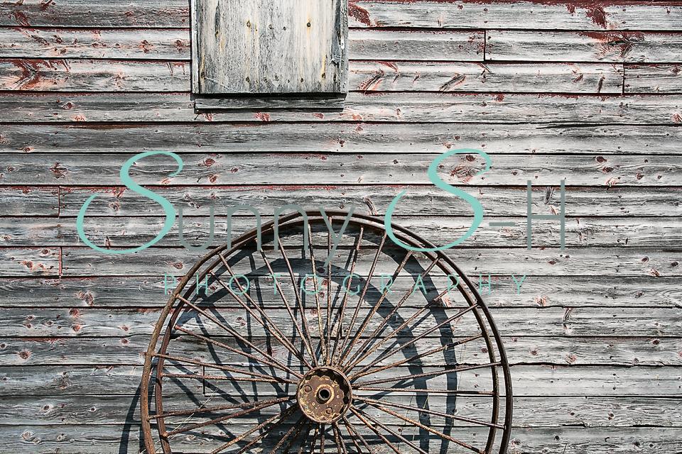 Metal Wheel on Wooden Boards