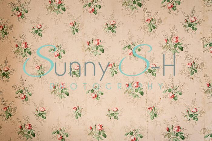 Cream Flower Rose Wallpaper H