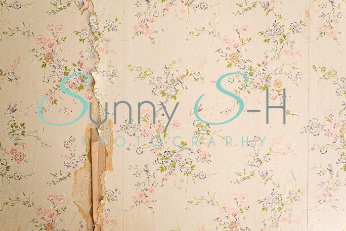 Cream Flower Wallpaper H