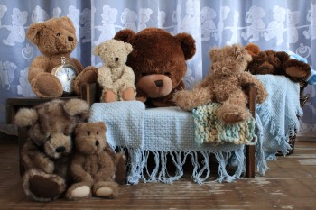 Teddy Bears Blue