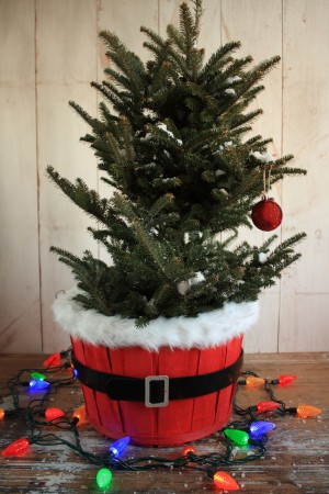 Ho Ho Ho Tree
