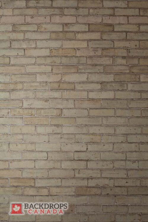 Light Beige Brick Wall Photography Backdrop