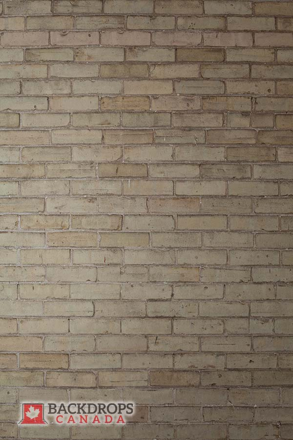 Light Beige Brick Wall Photography Backdrop