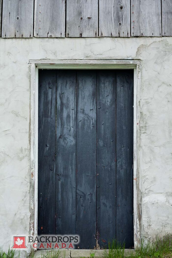 Blue Door Photography Backdrop