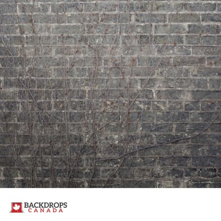 Grey Brick with Vines Photography Backdrop