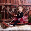 Little girl sitting on sleigh posing for Christmas mini session
