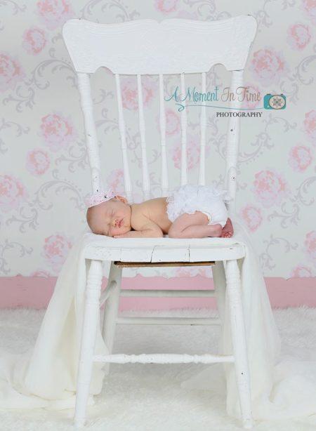 Elegant Pale Pink Backdrop with Newborn