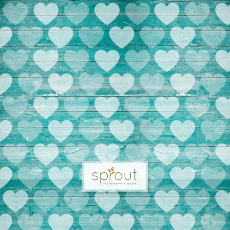Faded Hearts on Wooden Teal Photography Backdrop