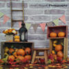 Fall Themed Photography Backdrop set up with pumpkins