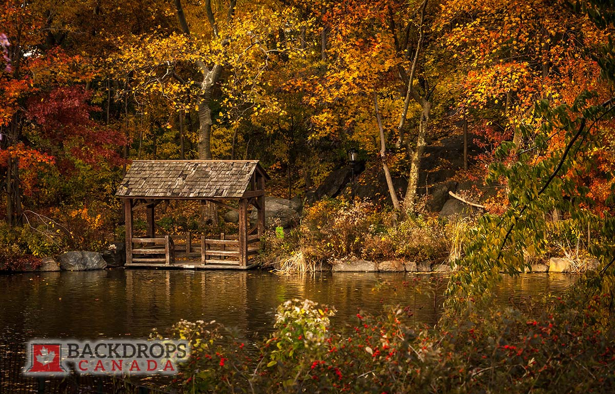 Autumn Leaves beside waterfront Photography Backdrop