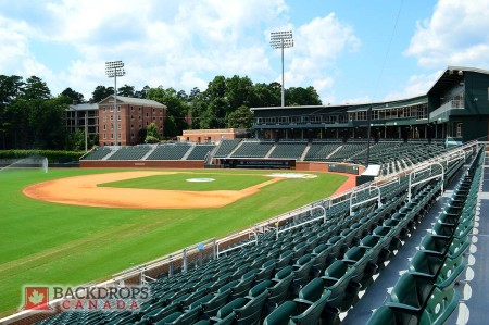 Baseball Stadium Photography Backdrop