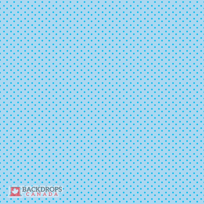 Blue Polka Dot Photography Backdrop