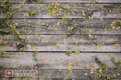 Grey Wooden Boards with leaves Floordrop