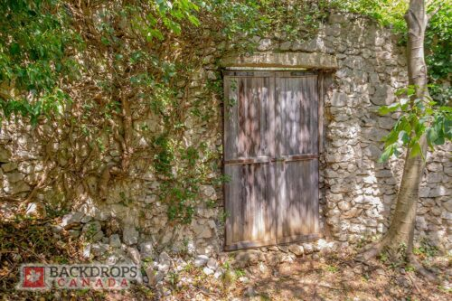 Stone Wall with Door Photography Backdrop