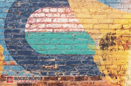 Painted Brick Photography Backdrop