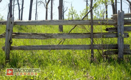 Old Wood Fence Photography Backdrop