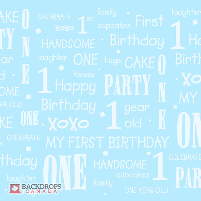 First Birthday Blue Photography Backdrop