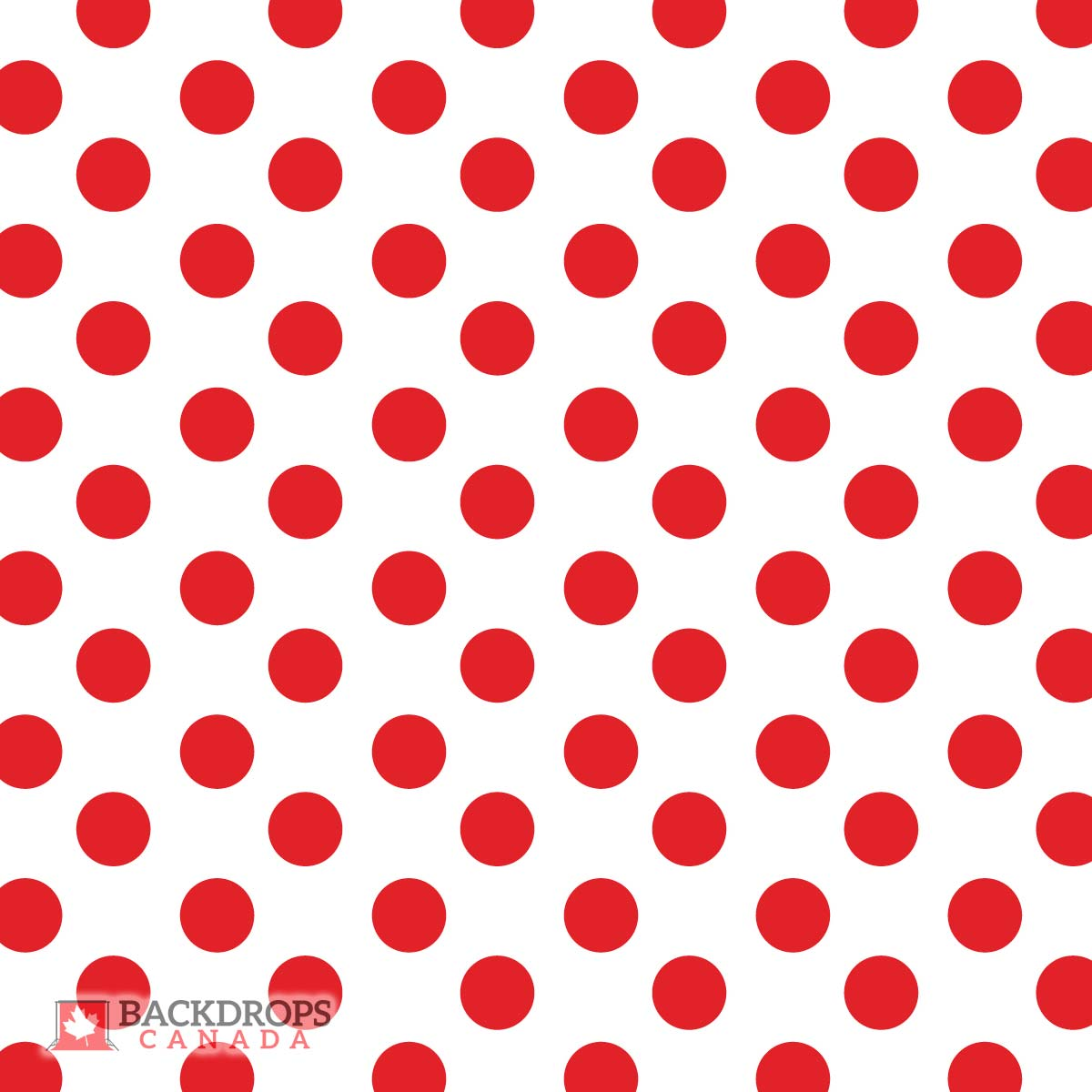 Red Polka Dot Photography Backdrop