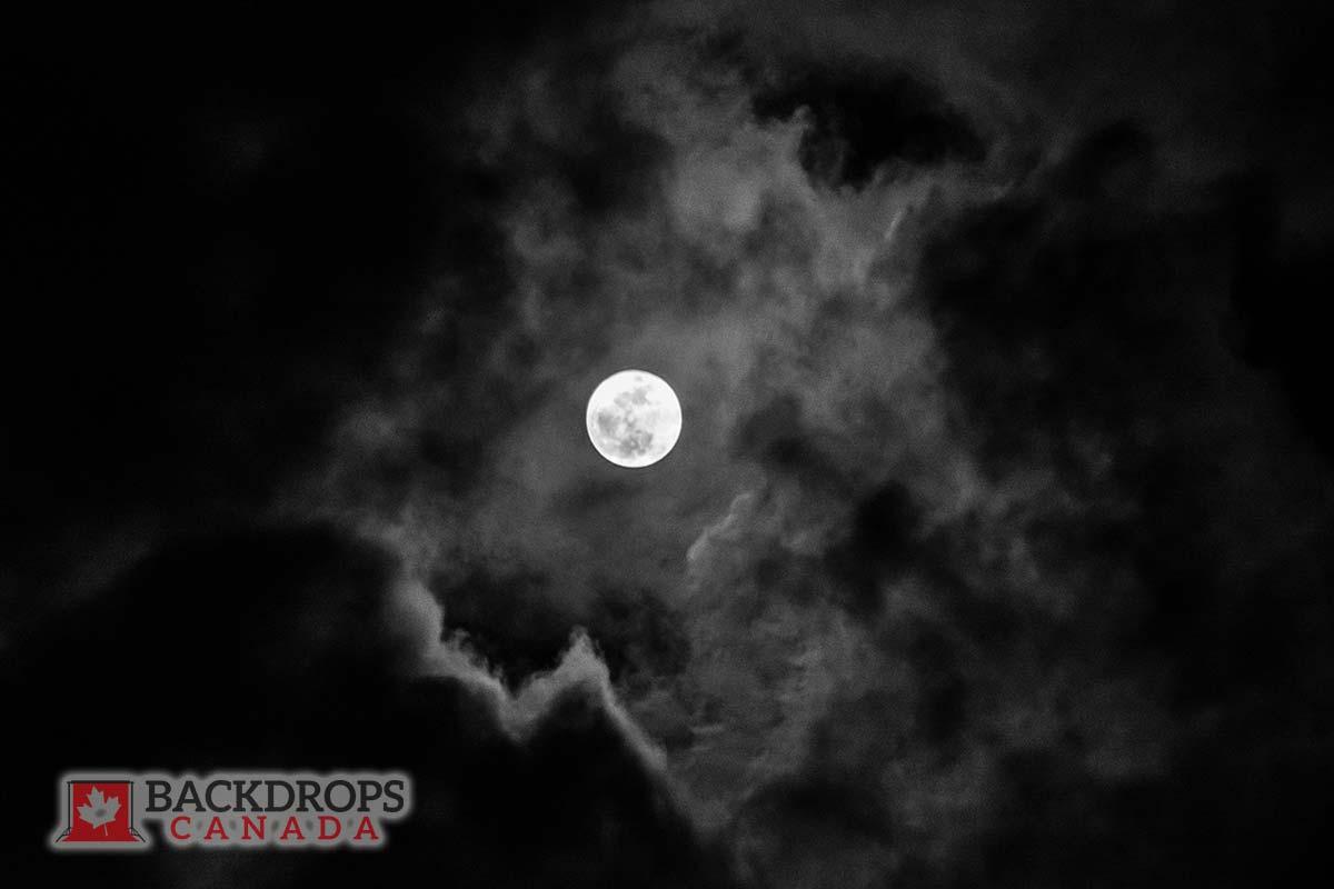 Full Moon Photography Backdrop