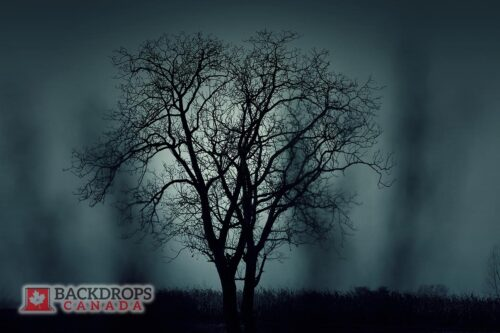Silhouette of a Tree Photography Backdrop