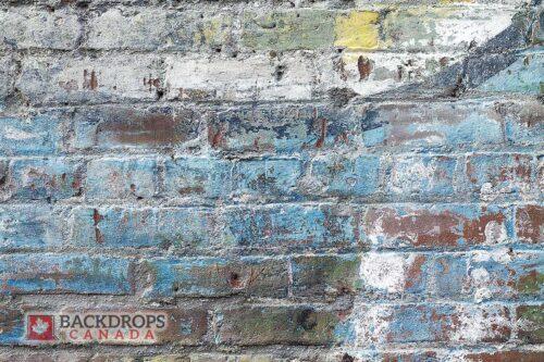 Painted Brick Photography Backdrop