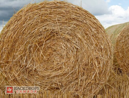 Hay Bale Photography Backdrop