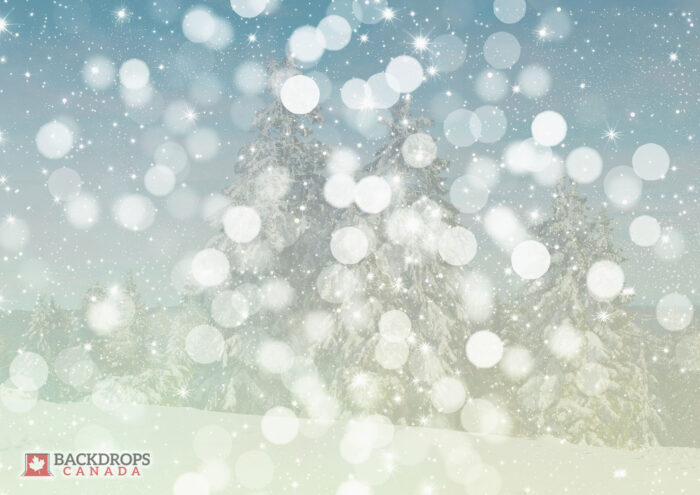 Bokeh Snowfall Photography Backdrop