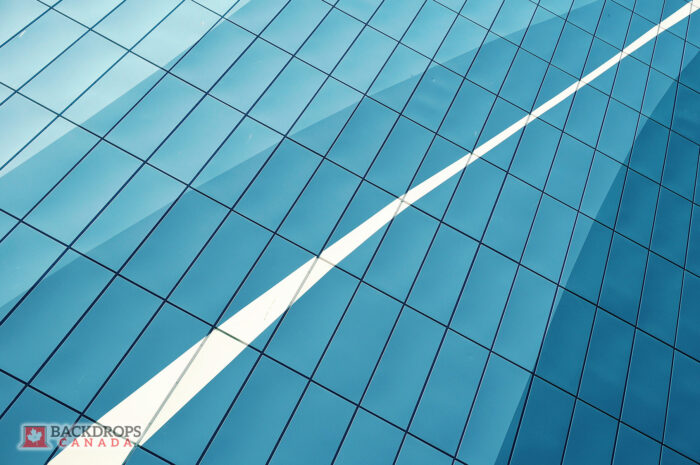 Windows of a Corporate Building Photography Backdrop