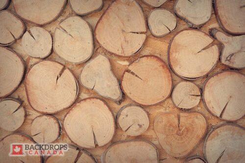 Tree Stumps Photography Backdrop
