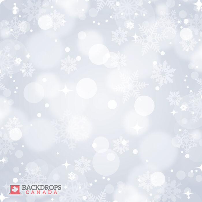 Bokeh Winter Grey Photography Backdrop