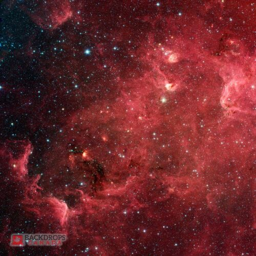North America Nebula Space Photography Backdrop