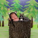 Newborn dressed like racoon with evergreen trees backdrop