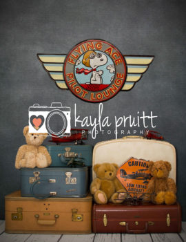 Aviator Bears Photography Backdrop