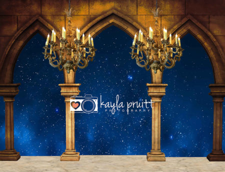 Beauty and the Beast themed Photography Backdrop