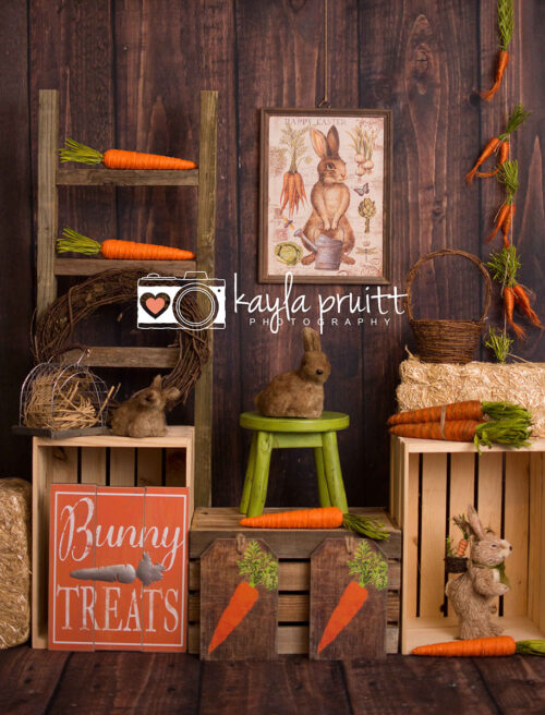 Peter Rabbit Photography Backdrop featuring carrots