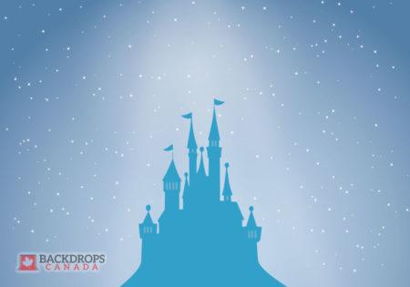 Blue Castel Photography Backdrop Cinderella