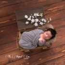 Chocolate Floorboards with newborn baby wrapped