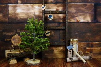 Lumberjack Cabin