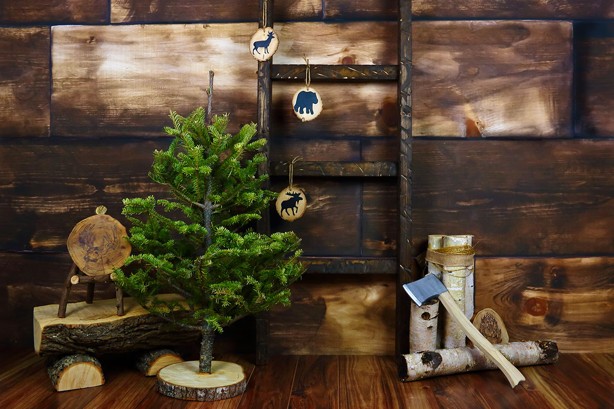 Lumberjack Cabin Photography Backdrop