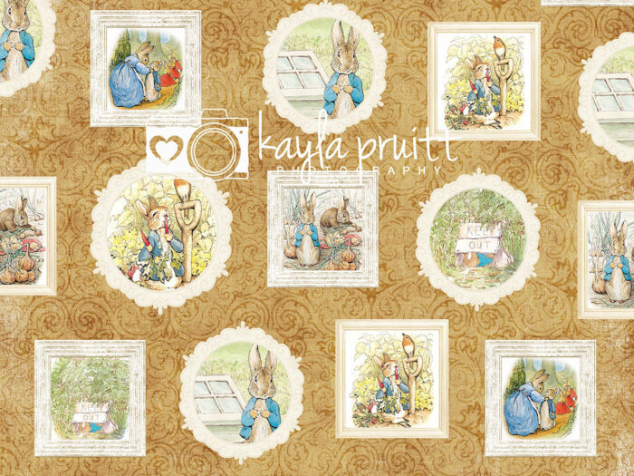 Peter Rabbit Frames Photography Backdrop