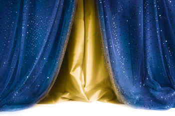 Sequin Curtain Beauty & the Beast Photography Backdrop