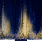 Sequin Curtain Blue & Gold