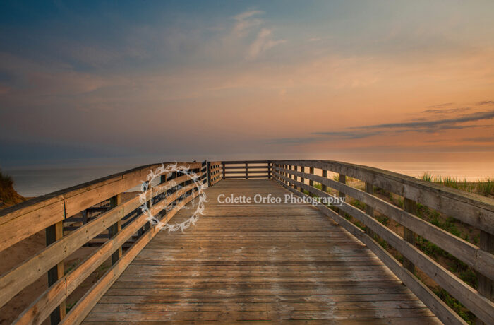 Boardwalk Sunrise Photography Backdrop